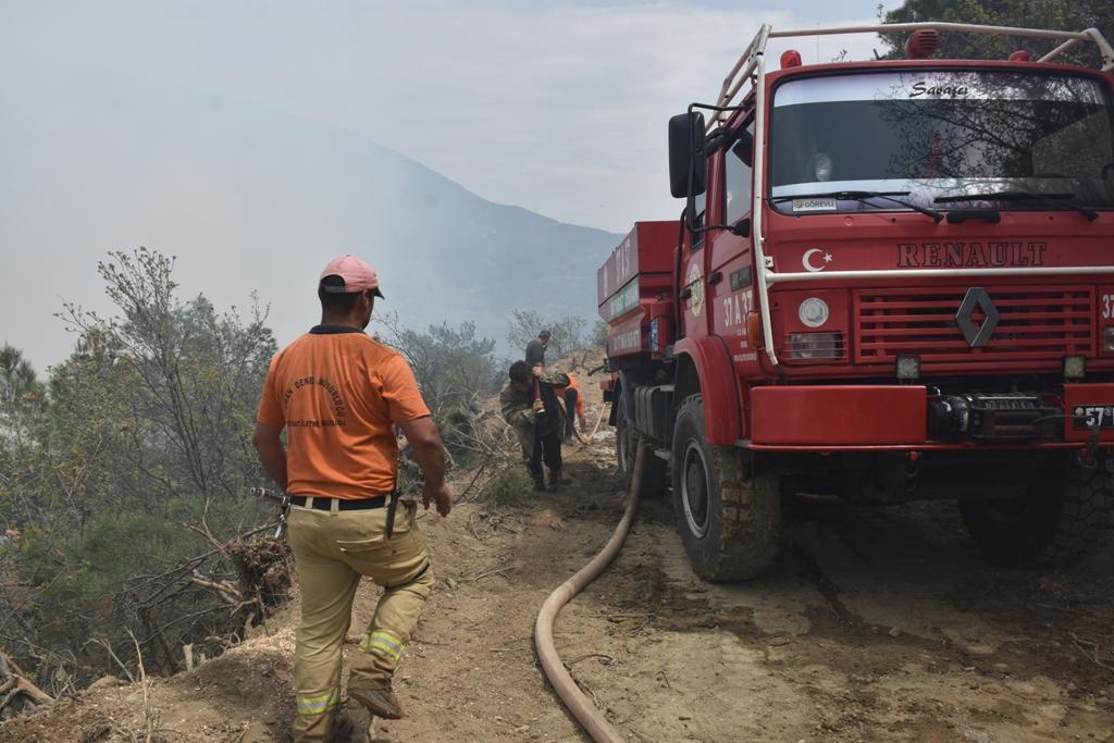 Sinop sınırında  orman yangını